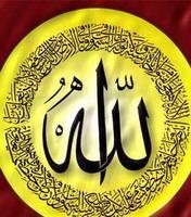 Quran Reader Arabic  with english transl
