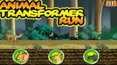 Animal transformer run