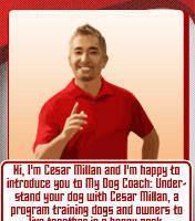 Cesar Millan My Dog Coach