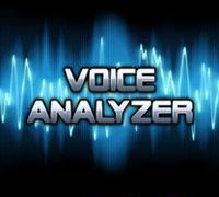 """Voice Analyzer """"320x240""""!!!"""