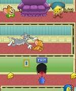 Game TOM & JERRY