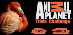 Animal Planet Trivia Chalange