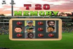 Cricketers Memory Game (320x240)