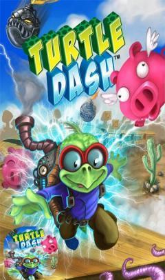 Turtle Dash s60v5