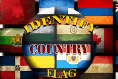 Identify Country Flag (320x240)