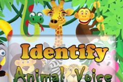 Identify Animal Voice (320x240)