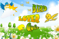 Bird Lover Quiz (320x240)