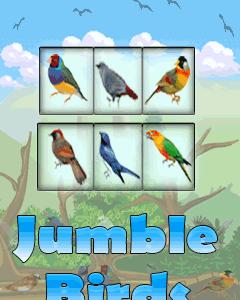 Jumble Birds