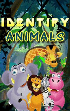 Identify Animal (240x400)