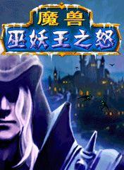 Warcraft: Adventure Artos