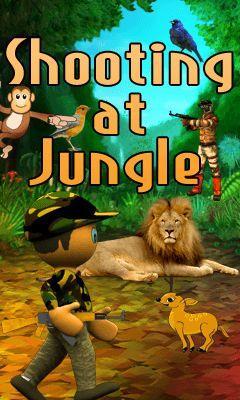 Shooting at jungle