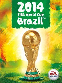2014: FIFA World cup Brazil
