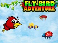 Fly bird adventure