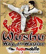 WUSHU - Way Of The Warrior