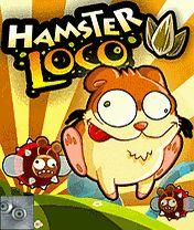 Hamster Loco