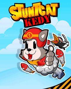Stunt Cat Kedy