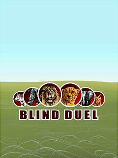 Blind Duel