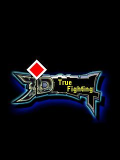 True Fighting 3D