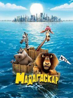 Madagascar Going Wild