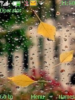 Rain With Tone