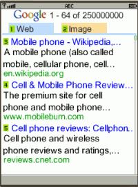 Google Web and Image Search on biNu