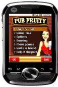 Pub Fruity Real Cash Slots