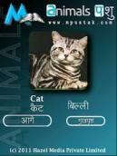 mPustak Animals Hindi English