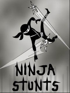 Ninja stunts