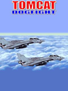 Tomcat Dogfight