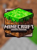 Minecraft: Pocket edition 3D
