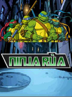 TMNT: Ninja Rua
