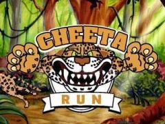 Cheeta run