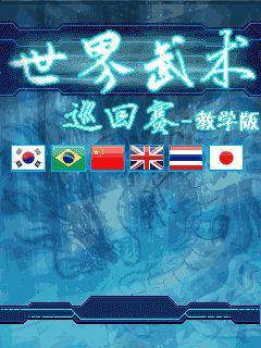 World martial arts tournament