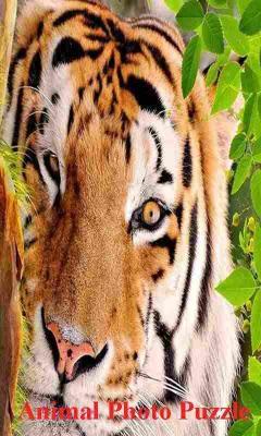 Animal Photo Puzzle