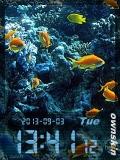 animated aquarium.....