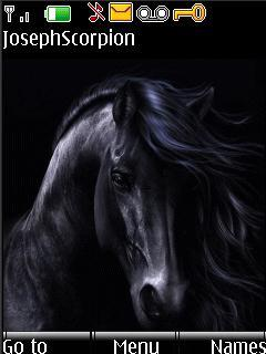 Animated Black Horse