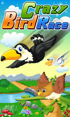 Crazy Bird Race