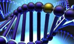 DNA matching wallpapers