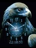 EAGLE CLOCK ANIMATED