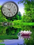 Nature forest clock