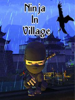 Ninja In Village
