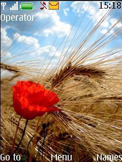 Poppy By Davin