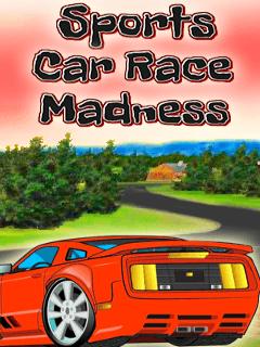 Sports Car Race Madness