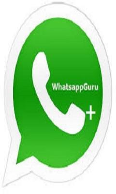 WhatsApp Guru Status FREE